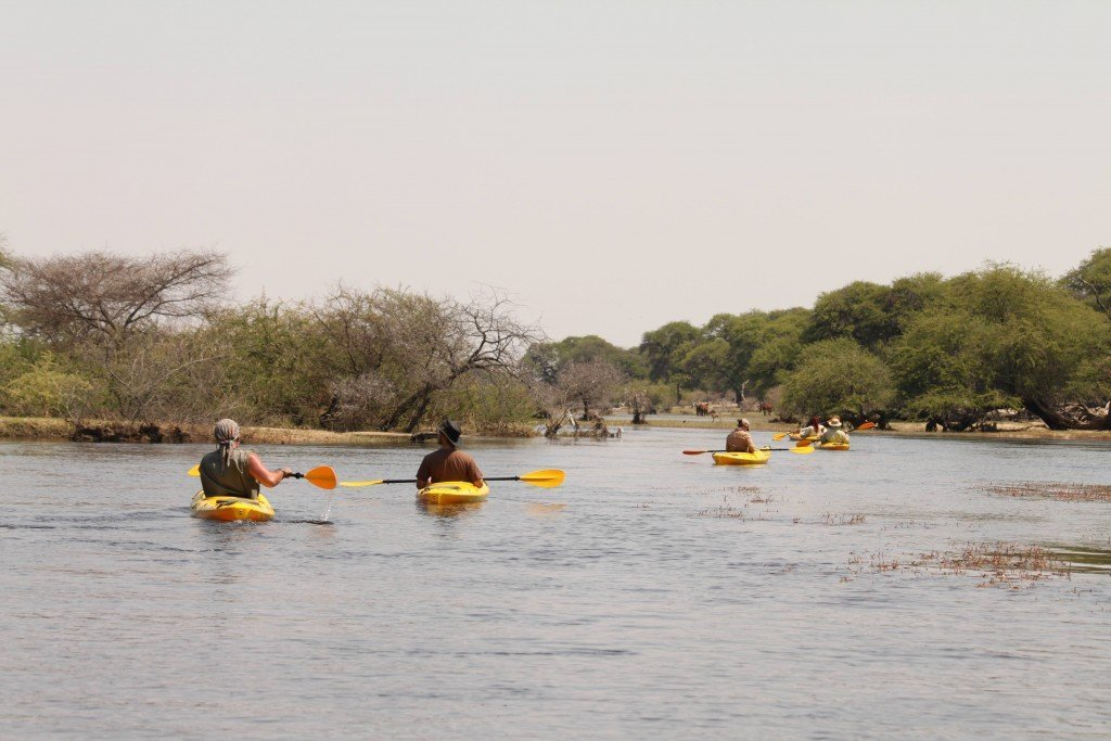 Kayaking in the Okavango Delta