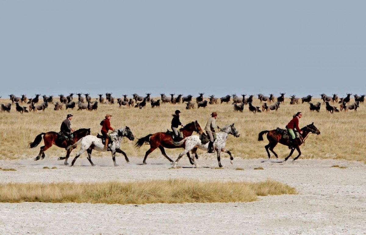 Riding on the Pans in the Makgadikgadi