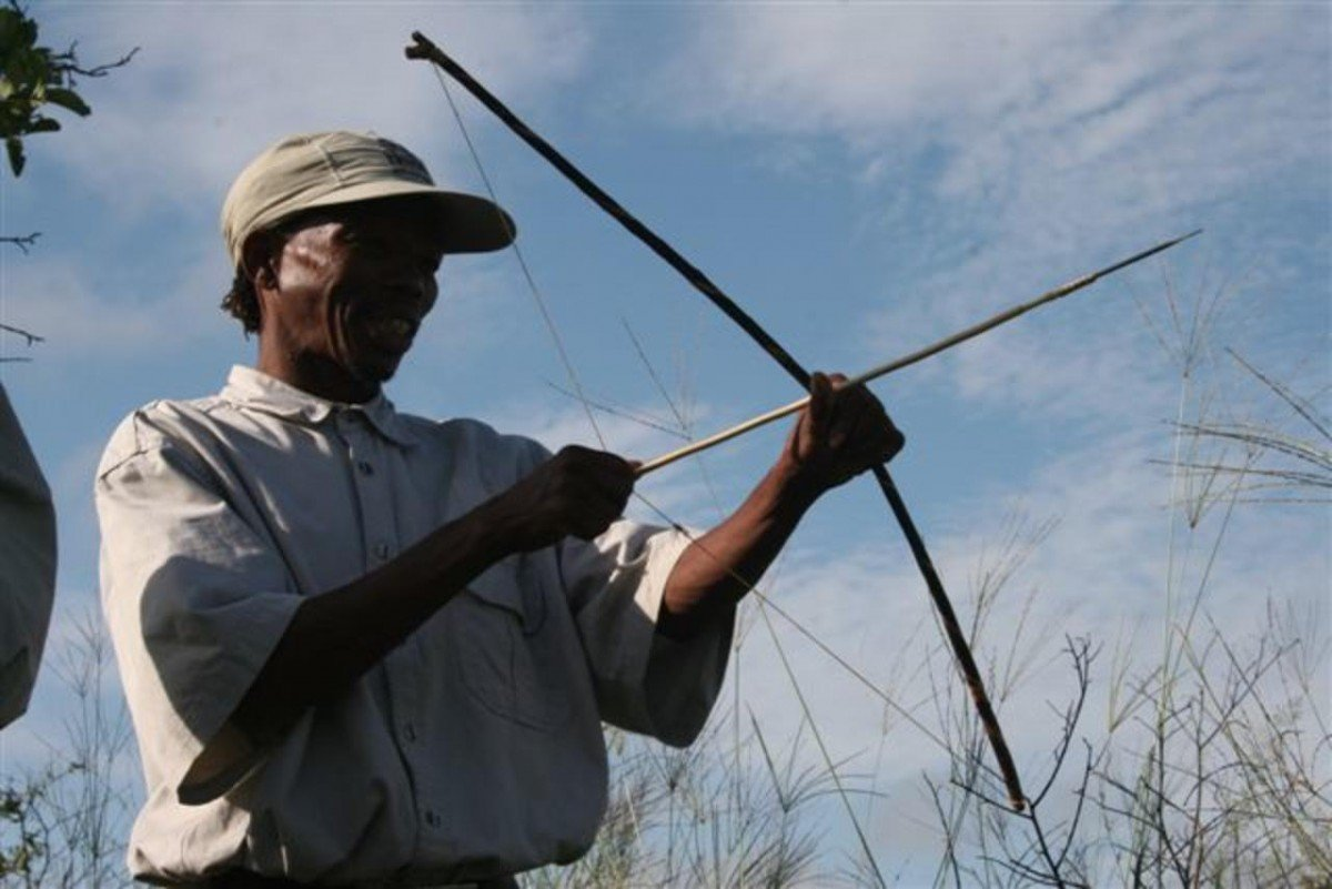 San bushman demonstrates bow and arrow