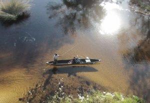 Aerial of a mokoro ride in the Okavango Delta