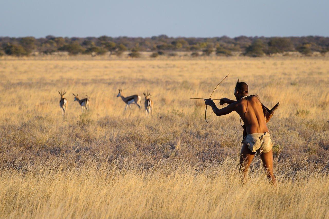 San hunting in the Kalahari