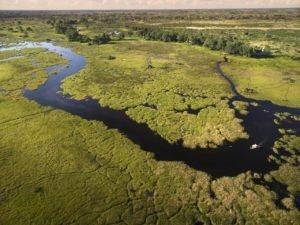 Aerial of Okavango Delta