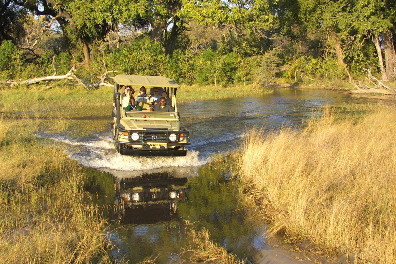 game drive through water in the Okavango Delta