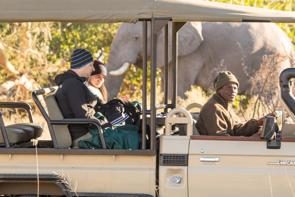 Elephant sighting on a game drive in the Okavango