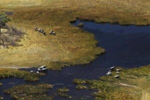 Aerial view in the Okavango Delta