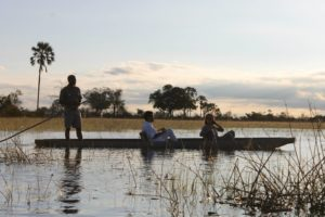 Mokoro ride in the Okavango Delta