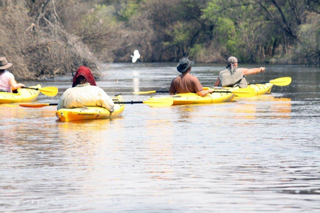 Kayaks in the Okavango Delta