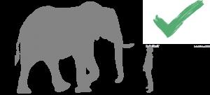 Do not run from elephants